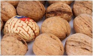 alimento-para-el-cerebro-300x181jpg