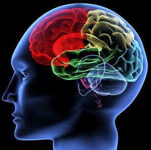 Imagen representando terapia cognitiva conductual